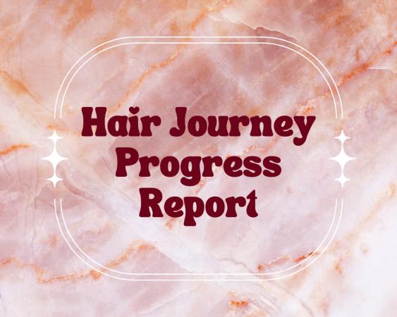 Hair Journey Progress Report