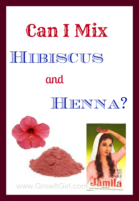 Can You Use Hibiscus And Henna Together Just Tiki