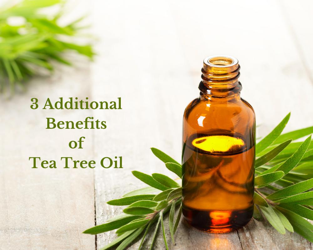 3 Additional Benefits of Tea Tree Oil