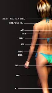A hair length chart used to determine the length of hair.