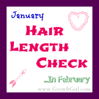 My January hair length check and what I use to trim my ends without any mistakes. www.growitgirl.com