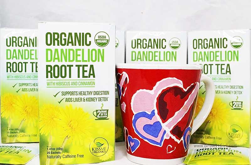 Organic Dandelion Root Tea with Hibiscus & Cinnamon Case
