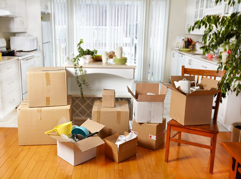 Top 5 Moving Tips For Stress Free Moving http://www.justtiki.com