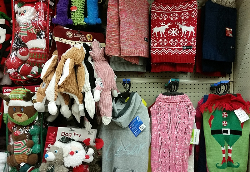 dog-outfits-at-big-lots
