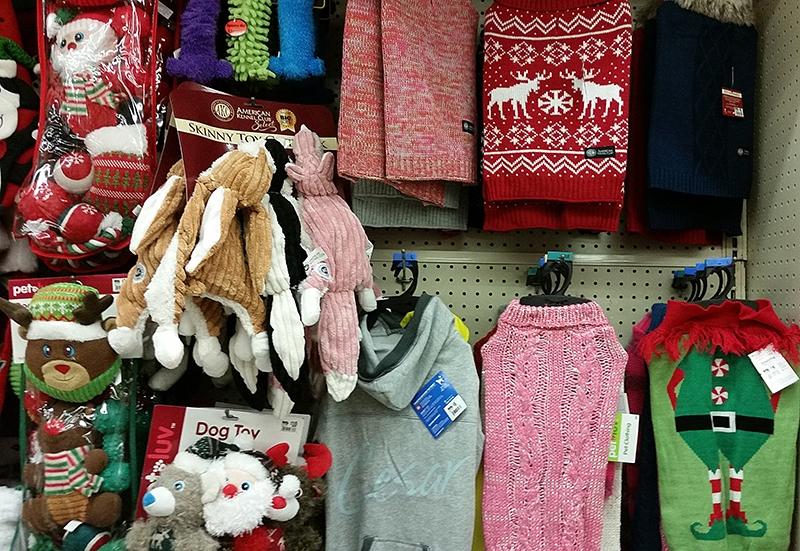 dog-outfits-at-big-lots